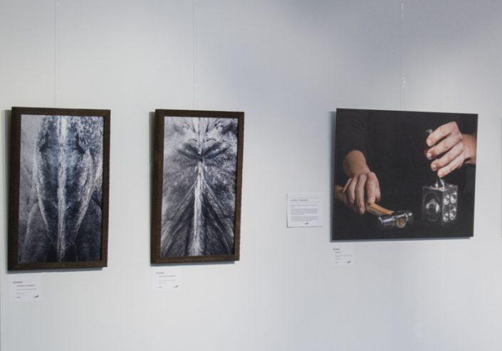 Expositie Anita Neve Galerie